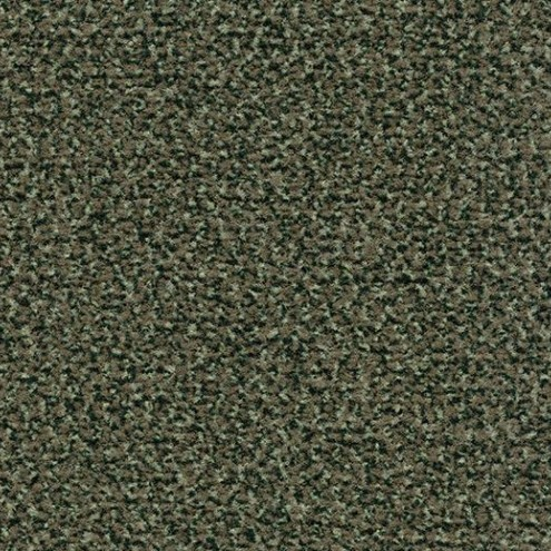 Coral Classic 4758 olive