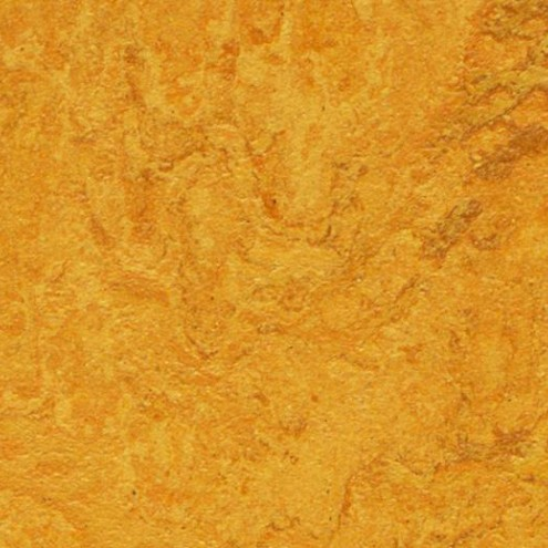 Forbo Marmoleum Real 3125 golden sunset
