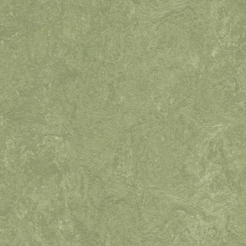 Forbo Marmoleum Real 3240 willow