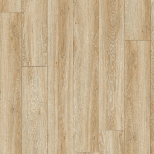 IVC Moduleo 55 Woods Blackjack Oak 22220