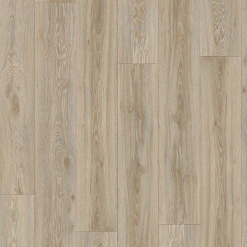 IVC Moduleo 55 Woods Blackjack Oak 22246