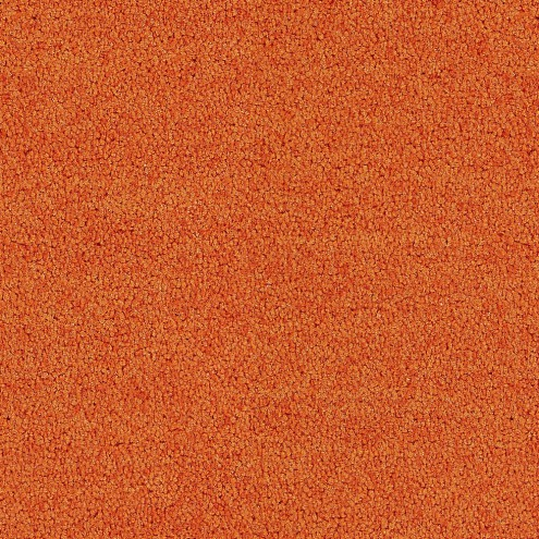 Interface Polichrome Solid 4266022 Carrot